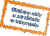 Raport specjalny Bankier.pl - 10 sposobów na zarobek w sieci 1